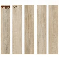 Gach-Vitto-1580-4203